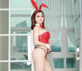 San Jose Escort Bunny Lizzy Adult Entertainer, Adult Service Provider, Escort and Companion.