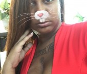 Chicago Escort Femdom  Master Shelley  Adult Entertainer in United States, Female Adult Service Provider, American Escort and Companion.